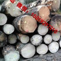 尚高木業2018年11月供應法國云杉原木
