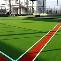 榆樹市門球場專用簡易草坪