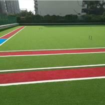 金鳳區15毫米門球場地塑料草皮地毯