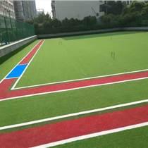 會澤縣13毫米門球場人工草坪如何選擇
