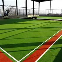 鲁山县外贸门球场人造草皮