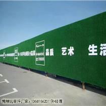 工地工程塑料草坪價格每平米多少