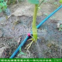 廣西果樹噴灌設備 南寧噴頭