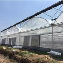 【贵贵温室】连栋温室大棚设计建造与施工