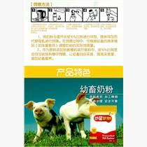 农村养殖:如何养殖家猪的方法