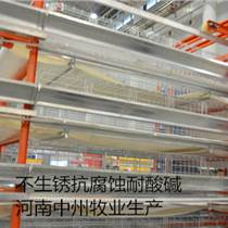 西平雞籠廠直銷中州層疊式蛋雞籠肉雞籠設備4列4層
