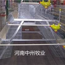 中州牧業提供專業養雞設備定制各種蛋雞籠肉雞籠