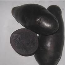黑土豆种子黑金刚