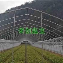 河南日光溫室 溫室大棚的通風設計要求