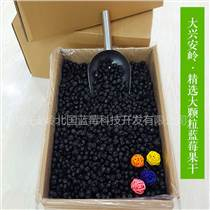 大颗粒蓝莓果干 大兴安岭蓝莓干 自然晒干 散装蓝莓干
