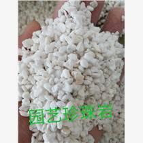 供应安徽天长市优质园艺珍珠岩厂家直销