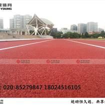 新国标塑胶跑道材料施工建设专业厂家,质保三年!