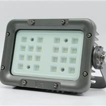 30W/40W/60W輕便型LED防爆投光燈廠家直銷