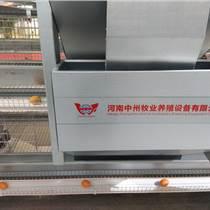 蛋雞籠價格 優質雞籠批發 層疊式階梯式熱鍍鋅