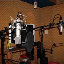 动画制作,视频制作、广告录音、企业彩铃