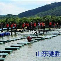 戶外景區農家樂水上趣橋 水上拓展項目網紅橋搖擺橋 水