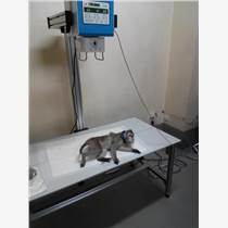 動物攝影床