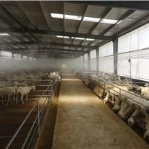 養雞場養鵝場自動消毒設備推薦  噴霧消毒設備