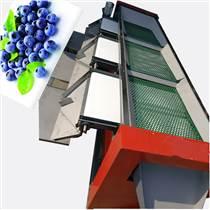 不傷果粉篩網式藍莓選果機