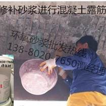 ECM環氧修補砂漿(環氧修補膠泥)