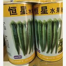 恒星水果秋葵種子