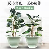 景德镇陶瓷花盆多肉盆盆栽家用办公摆件