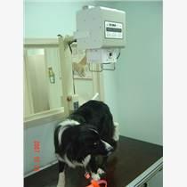 小動物X光機
