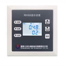 普博PB1523消防管網壓力顯示裝置