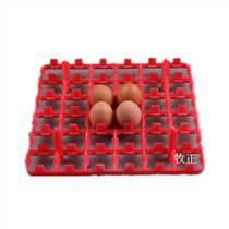 厂家批发36枚鸡蛋托 耐高温孵化蛋托 疫苗用蛋盘 优