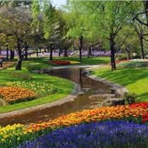 草坪養護修剪廣州綠化養護服務 怡軒園林綠化養護