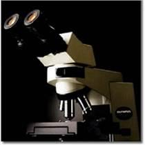 CX41 生物顯微鏡