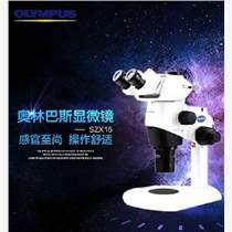 SZX16 體視顯微鏡