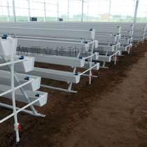 溫室種植有機草莓種植槽  番茄立體栽培槽