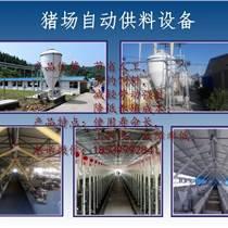 豬場自動料線/自動供料設備/自動上料系統