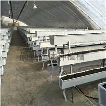 大棚種植草莓立體種植槽 番茄栽培槽廠家