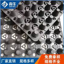 湖南省片材排水板