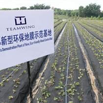 防草膜 保溫膜  農用地膜 無紡布地膜 地膜工廠