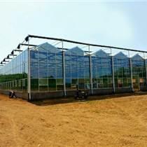 河南奧農苑玻璃溫室設計安裝改造