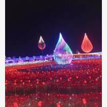 廣西柳州夢幻燈光展出租燈光節造型制作廠家