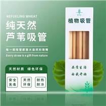 可降解吸管工廠批發環保吸管蘆葦吸管植物纖維吸管