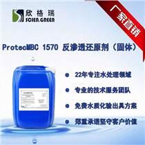 反滲透還原劑固體ProtecMBC1570清洗廠家清