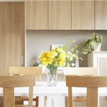 家具漆價格,家具漆批發代理,邦派漆廠家招商